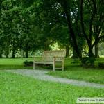 جلسة جانبية حديقة بادن بادن